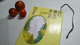 DSC_0913.JPG